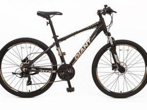 Xe đạp Giant ATX 618