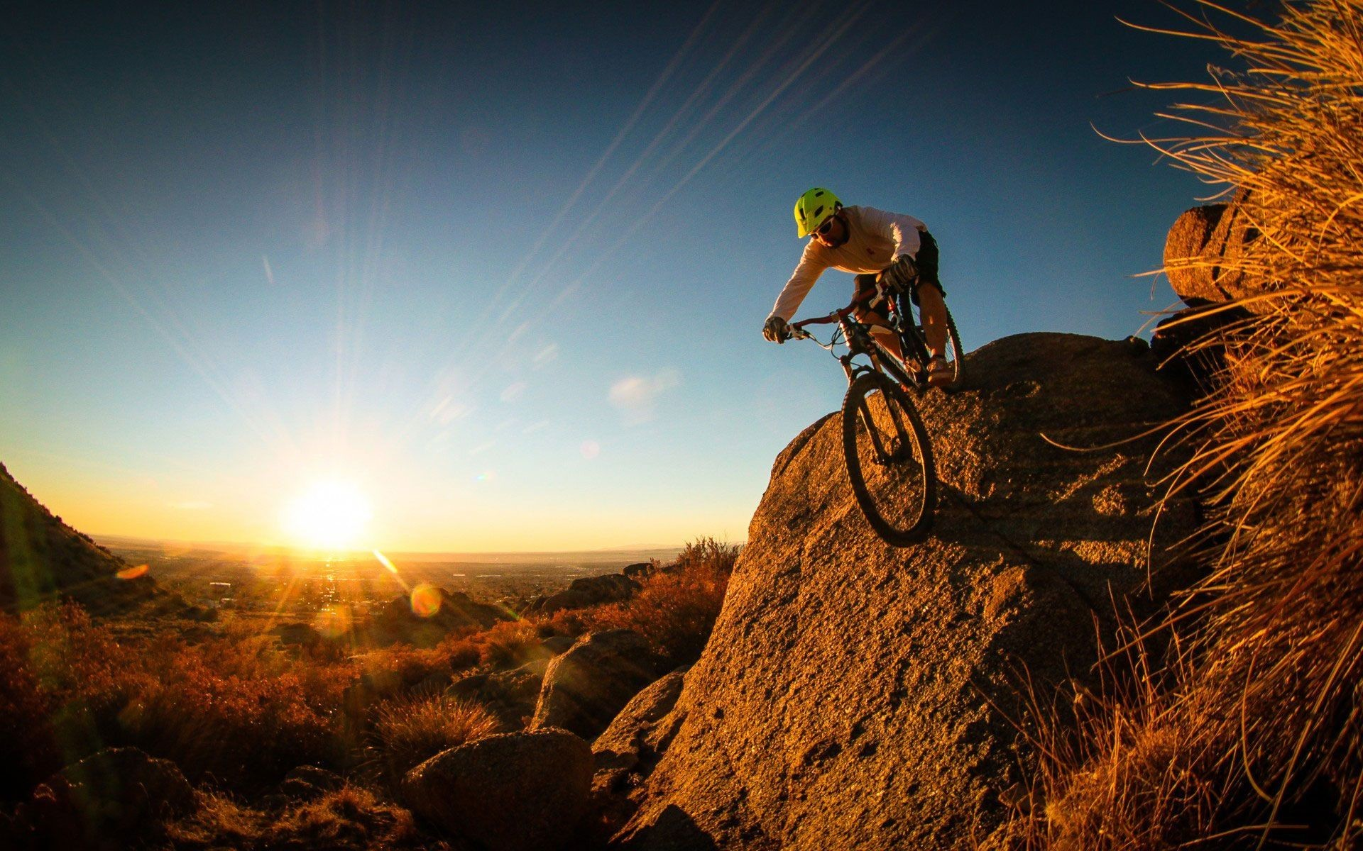 Hình ảnh xe đạp địa hình