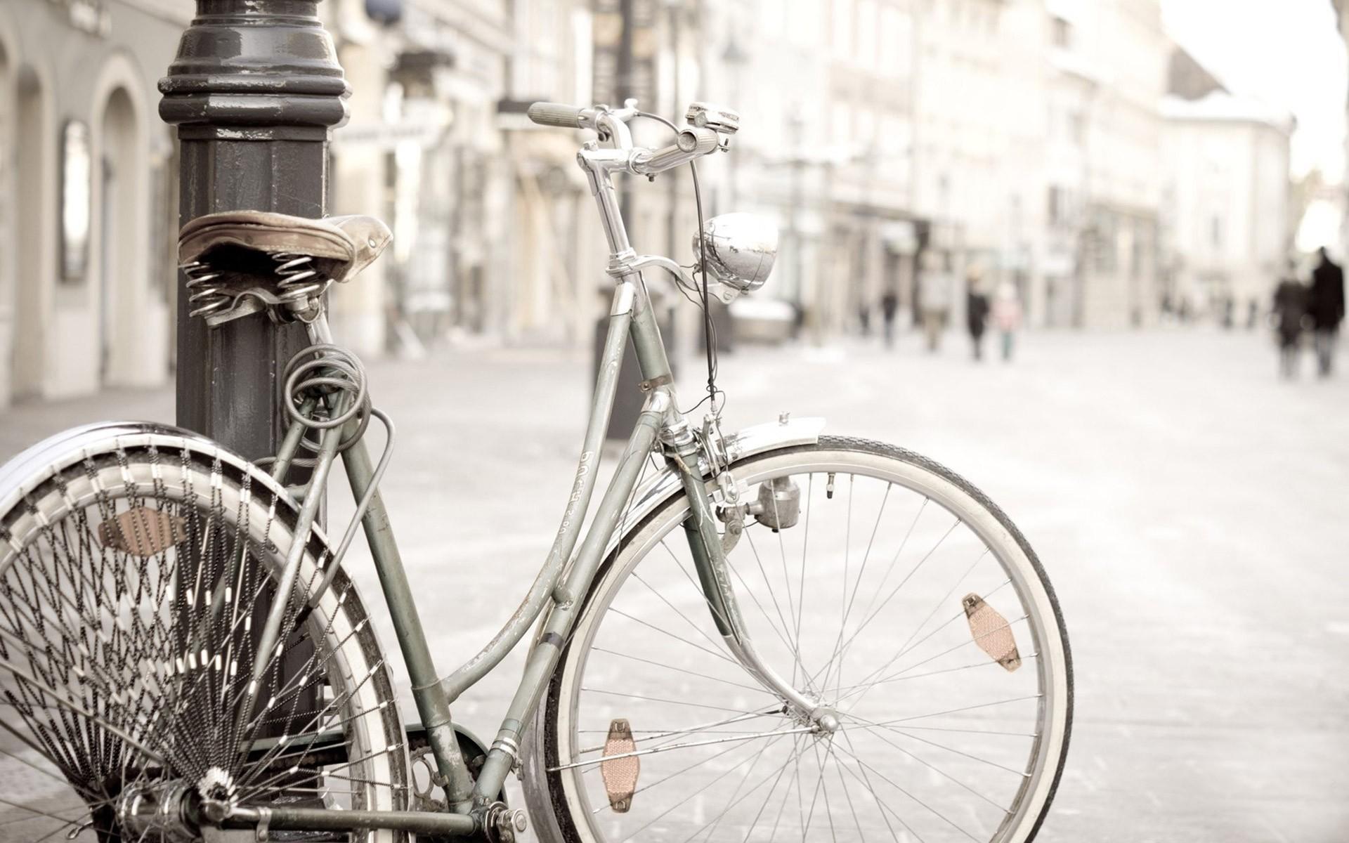 Hình ảnh xe đạp nữ đẹp