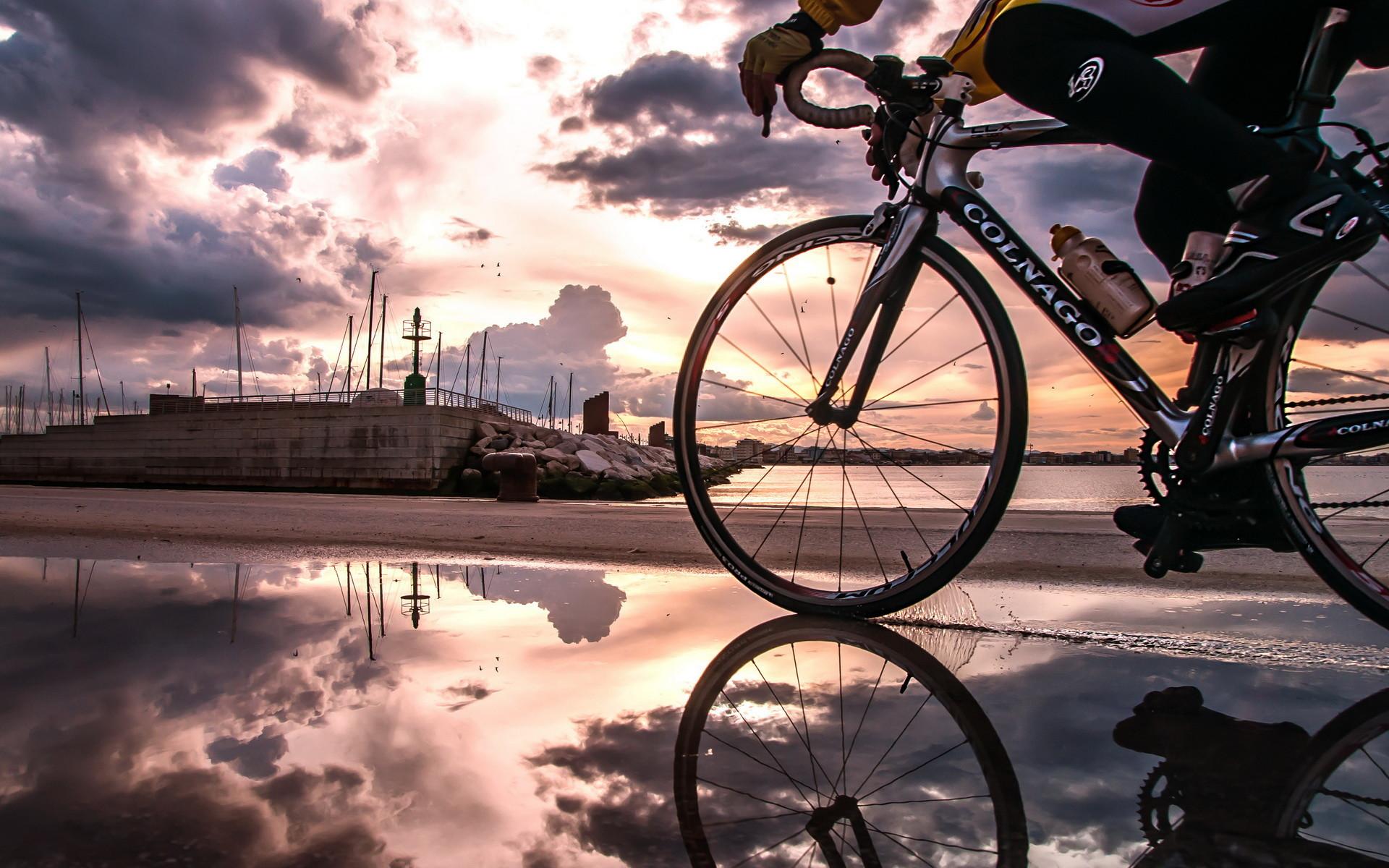 hình ảnh xe đạp road